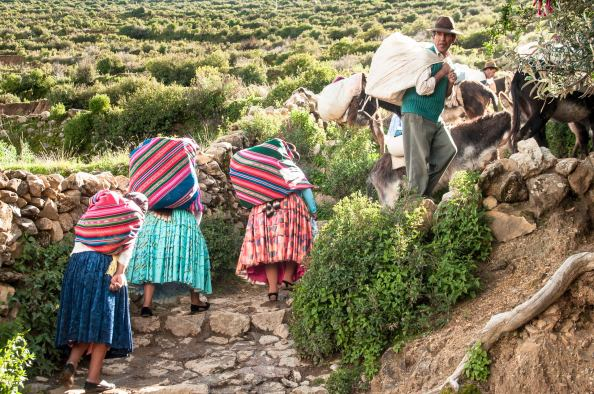 Les pentes escarpées de l'île compliquent la vie des habitants, malgré l'aide des ânes et des lamas pour porter les cargaisons