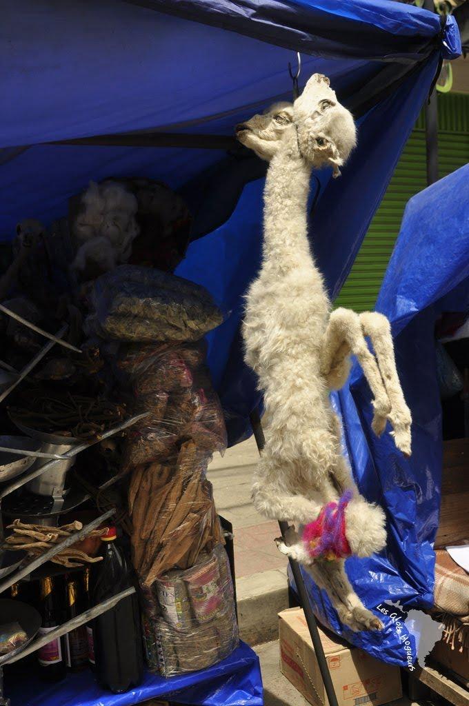 lamas séchés marché sorcières la paz