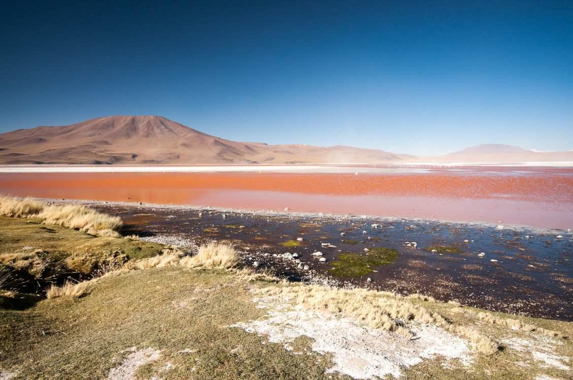 laguna rosada, sud lipez, bolivie