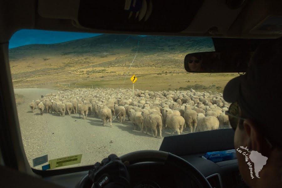 ET ce sont eux qui règlent la circulation ...
