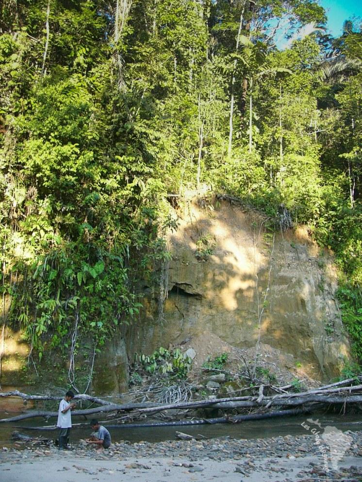 Campement dans l'amazonie