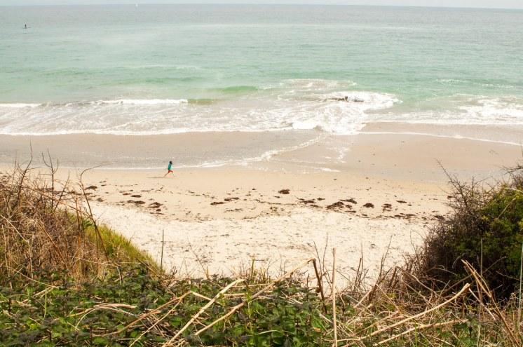 dune végétale Finistère