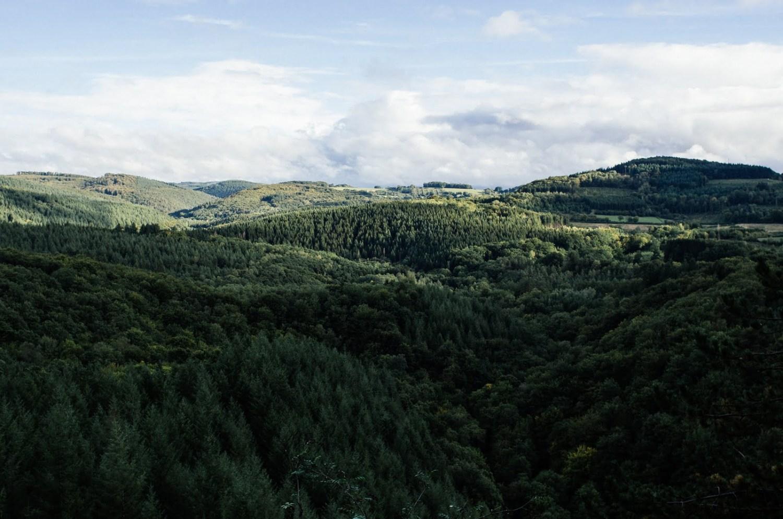 forêt parc naturel régional du morvan
