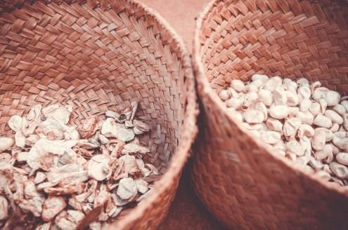 Les cocons de vers à soie sauvage de Madagascar sont triés