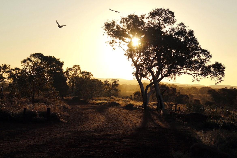 Parc national de Karajini en Australie - Les plus beaux paysages et parcs naturels d'Océanie