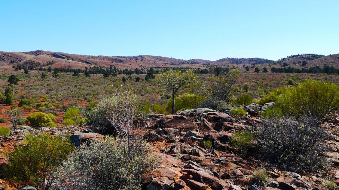 Parc national des Flinders Ranges en Australie méridionale - Les plus beaux paysages et parcs naturels d'Océanie