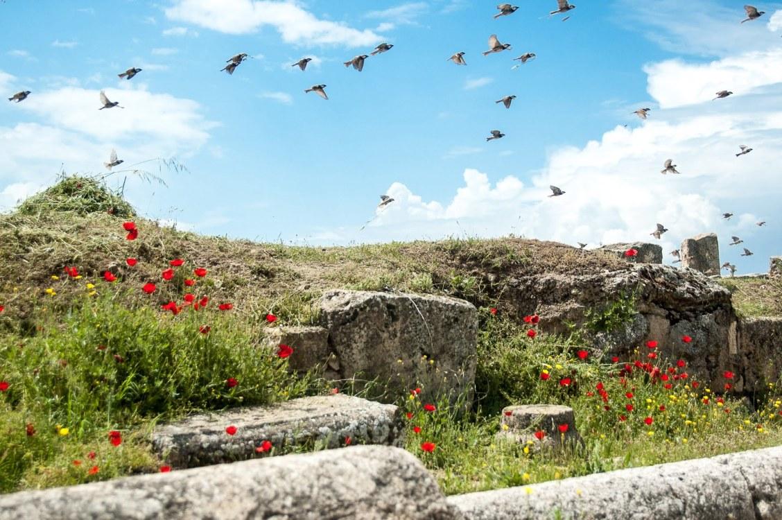 visite hierapolis turquie