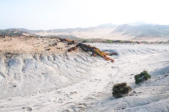 almogarve dunes dans la brume