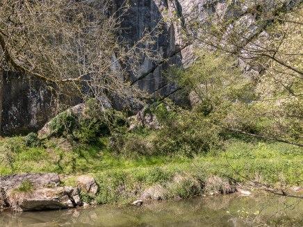 canyon saulges erve