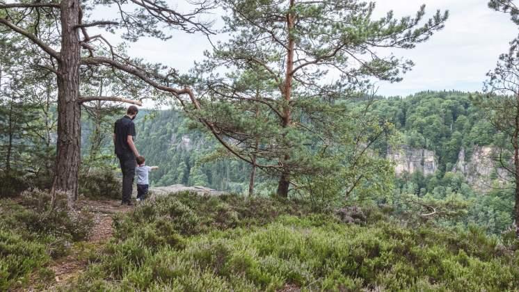 Dans la réserve des grès de l'Elbe - république tchèque