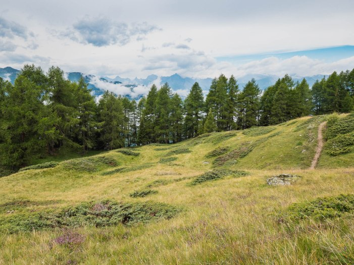 prairies alpages