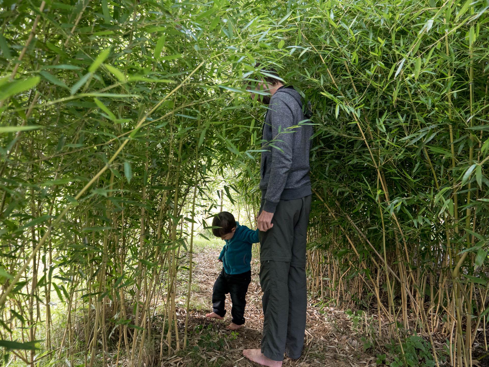 Sentier pieds nus le long de la via fluvia en Haute Loire