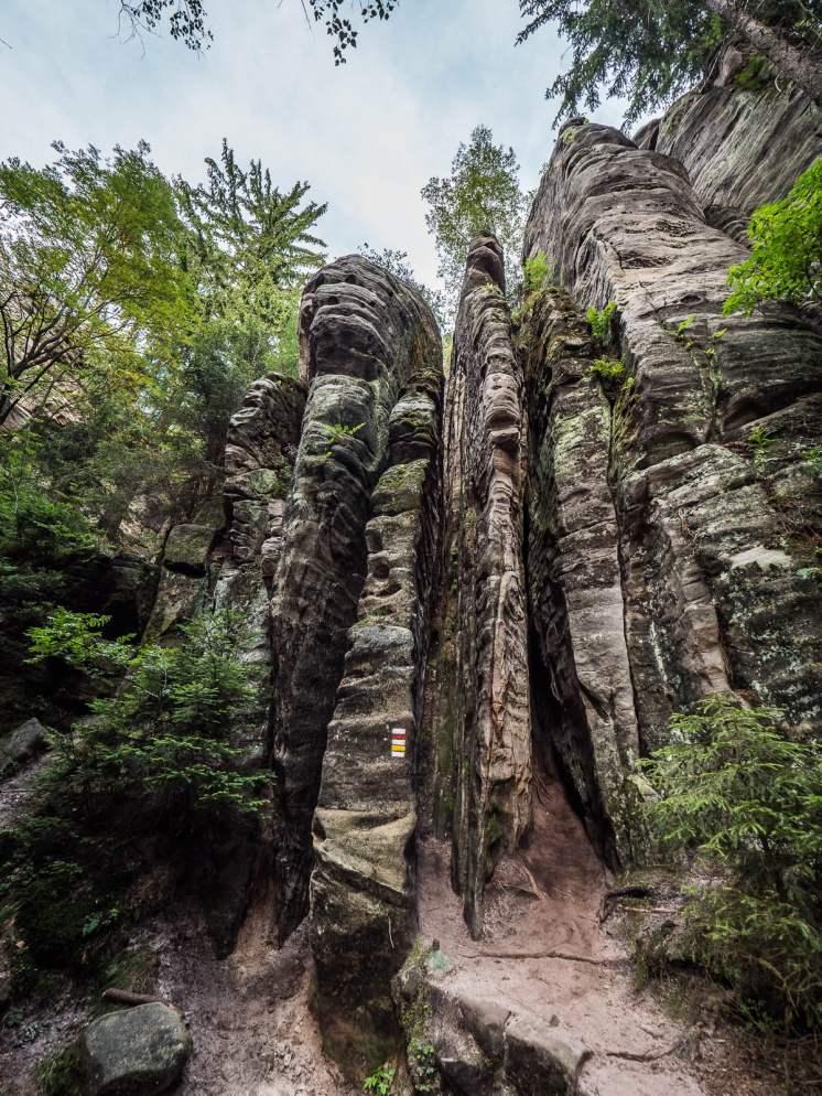 prachov rocks dans le pradis tchèque
