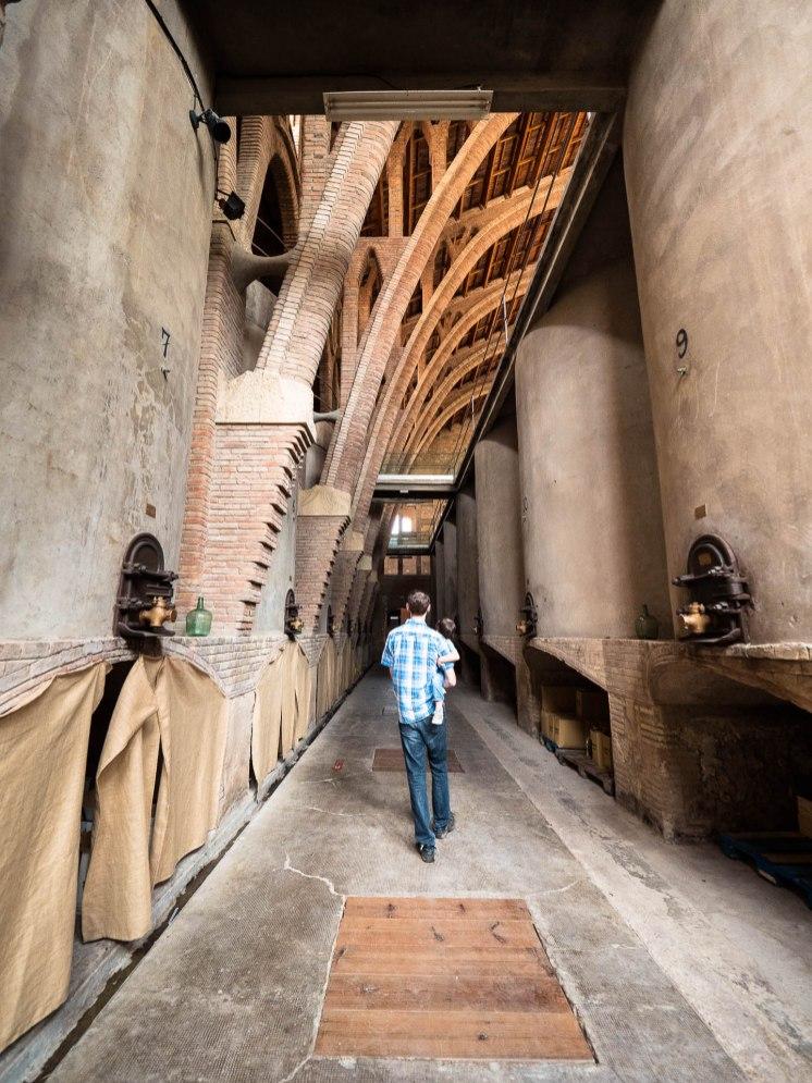 cathédrale du vin de Pinell de brai en catalogne - allée centrale