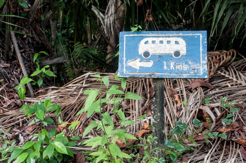 bus ou road trip pour un voyage au costa rica ?
