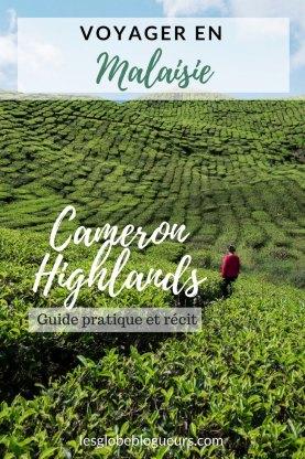 Notre récit et guide pratique pour visiter les Cameron Highlands, ses plantations de thé et bien plus en Malaisie
