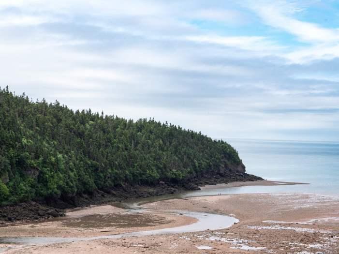 Fundy estuaire