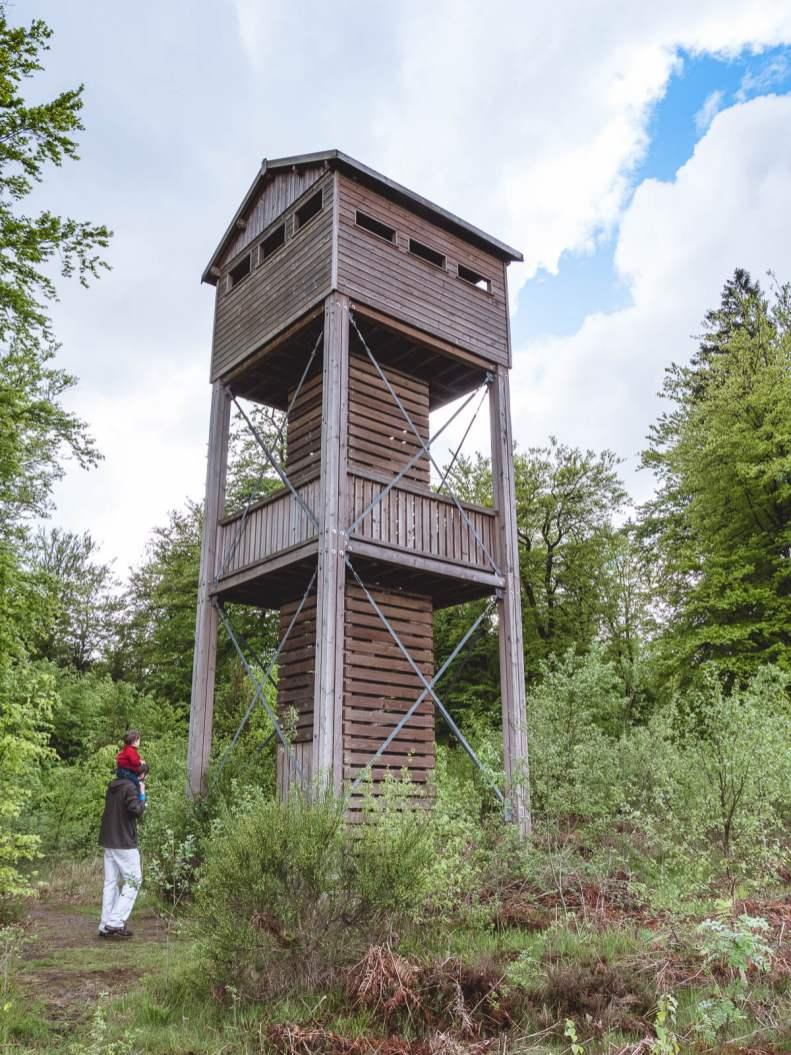 tour observation plateau des tailles