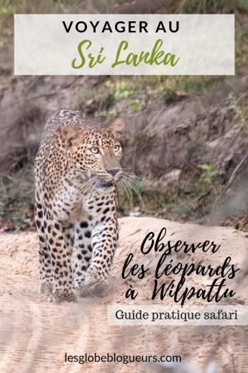 wilpattu safari 4