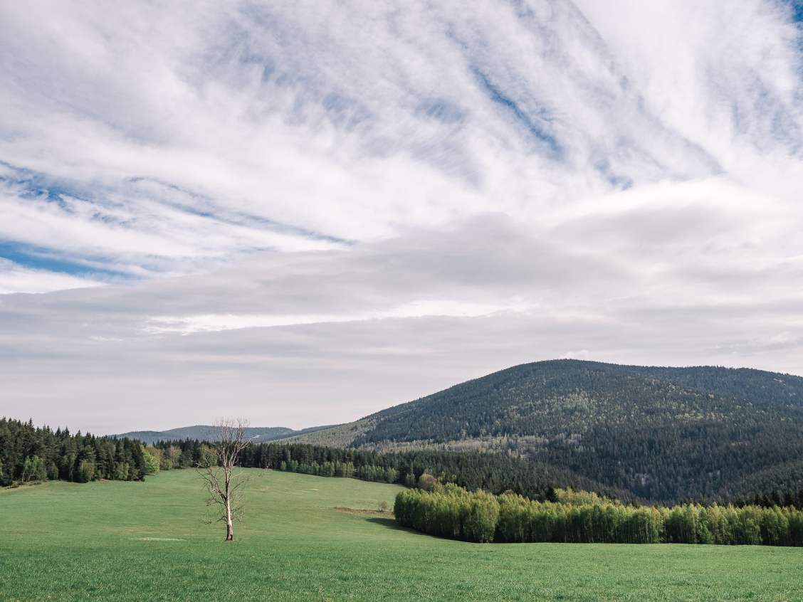 Forêt parc national de Sumava en République Tchèque, Bohême du sud