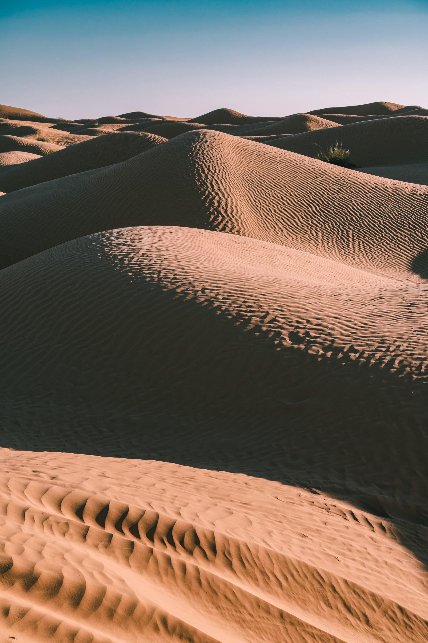 désert tunisie dunes