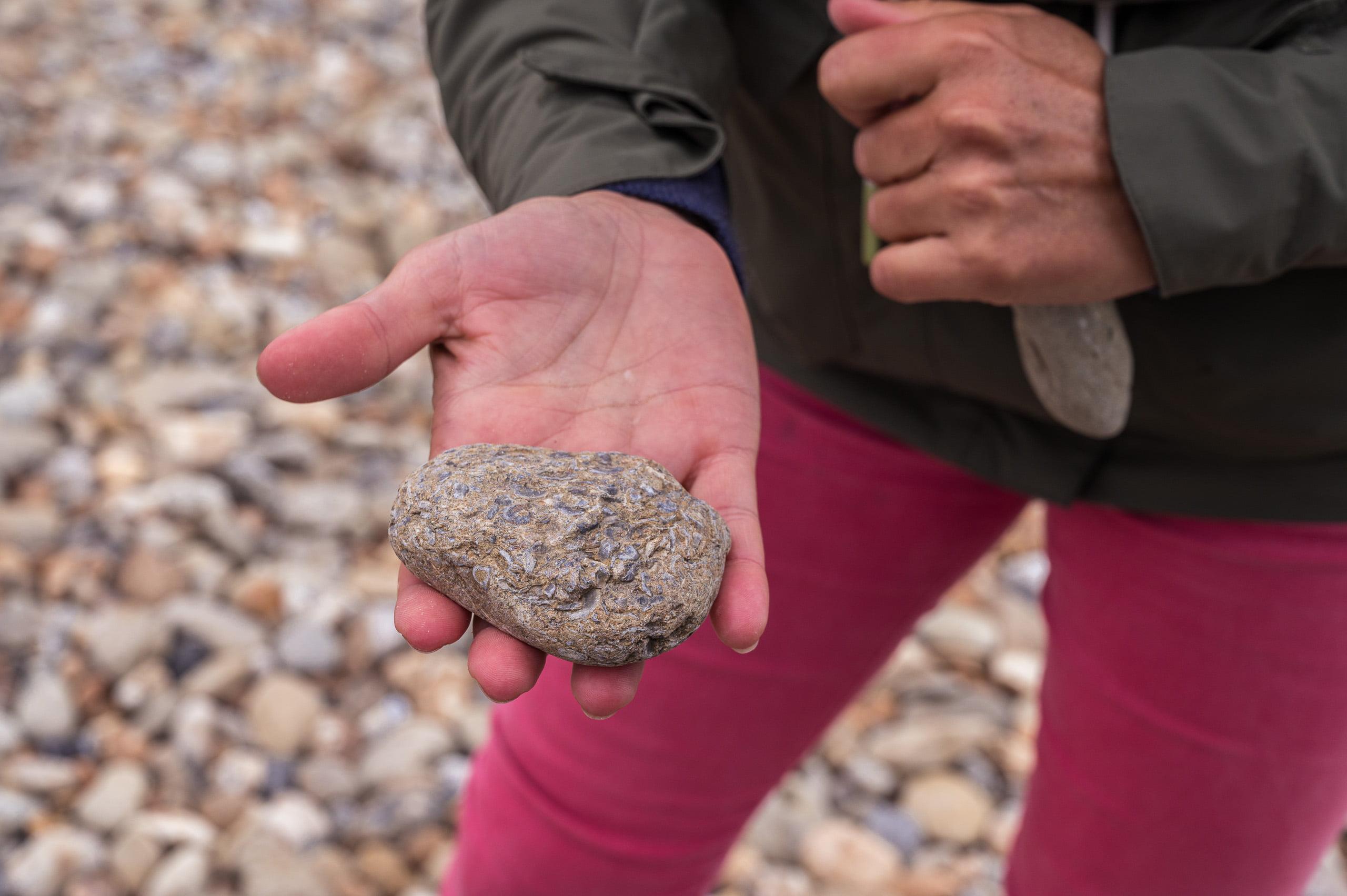 cote d opale 7763 - Les globe blogueurs - blog voyage nature