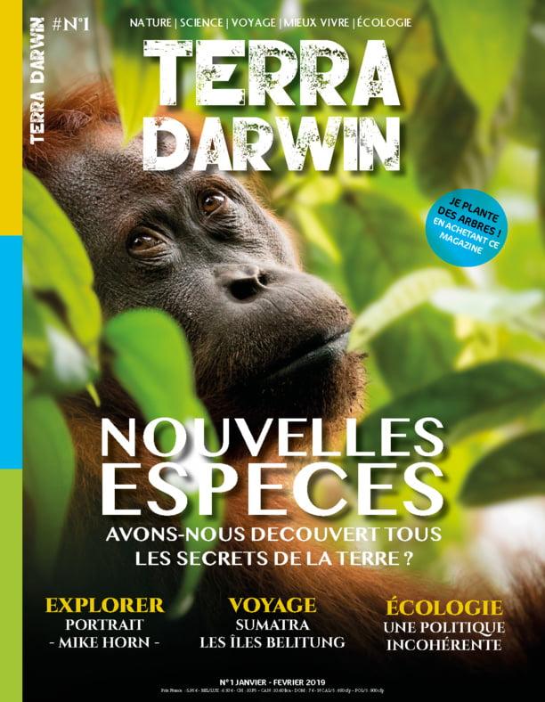 28904283 28239040 - Les globe blogueurs - blog voyage nature