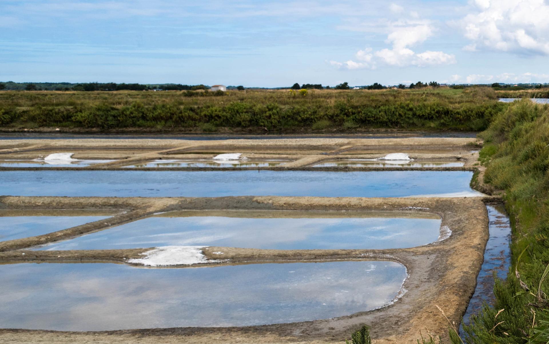 Que faire en Vendée - sables d'olonnes