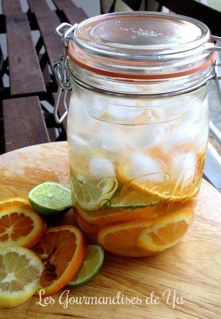 Eau de fruits detox : orange, citron jaune et citron vert LGY 01