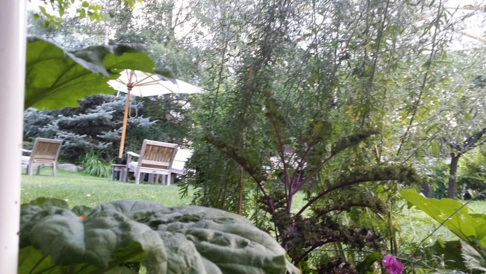 Les jardins...