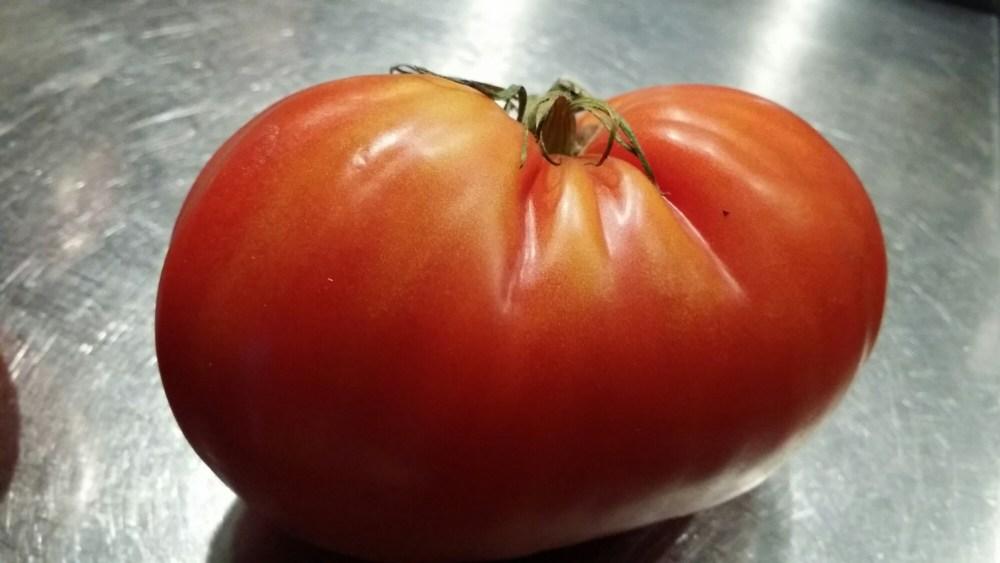 Tomate Coeur de Boeuf