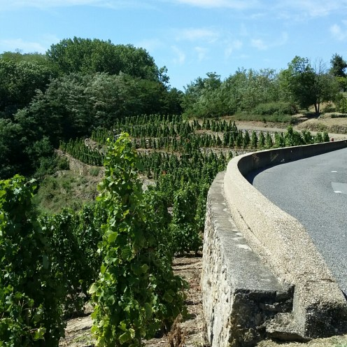 L'Ardèche et ses routes sinueuses...