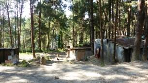 Le village de Nagarkot est en partie dans la forêt