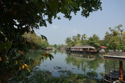 Backwaters de Kumarakom