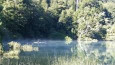 La brume matinale s'échappe de la surface du lac