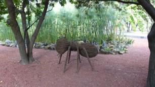Une fourmi géante