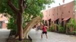 Dans le patio du palais municipal, Marion redresse un arbre...