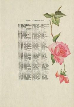 1900 Catalogue GE (47J_003_099)_wp