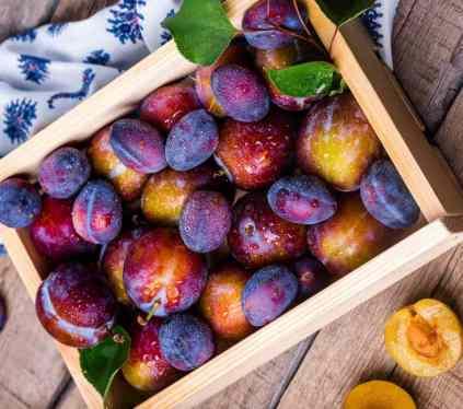 L'huile végétale de prune d'Ente, une huile aux multiples bénéfices