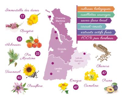 Cosmétiques bio made in France avec des plantes locales françaises du Sud-Ouest, Les Happycuriennes