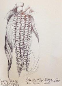 dessin-contemporain-stylo-#2.69-7janv-1l