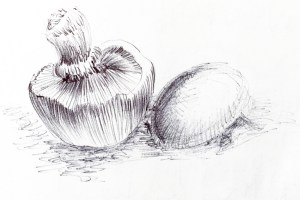 champignon-dessin-detail-petit-1l