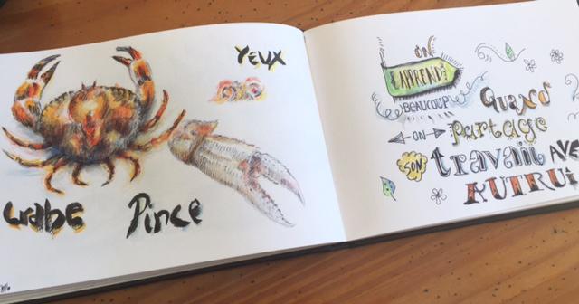 Renata-dessin-creativite-carnet