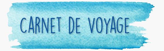 carnet-voyage-ok-gris