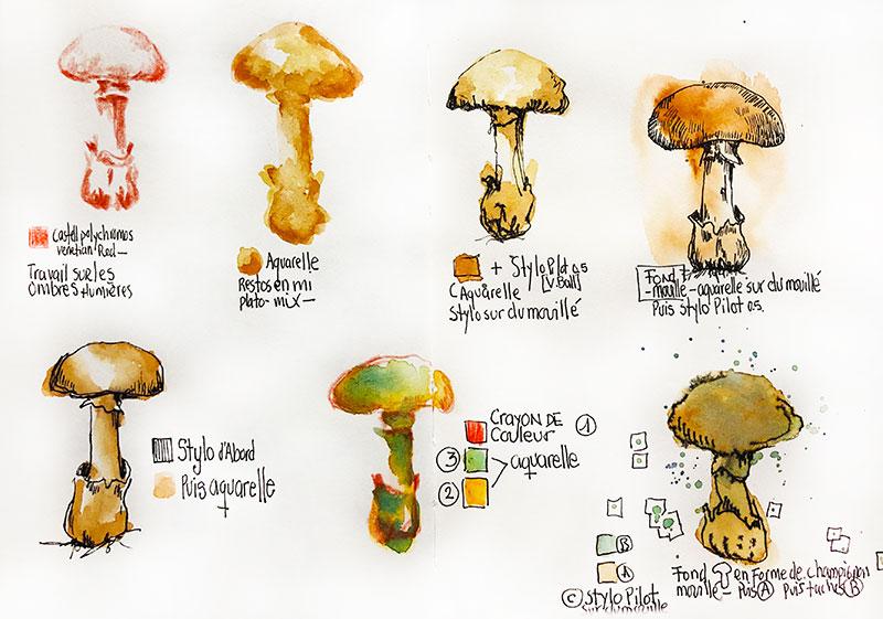 champignons-textures-dessin-renata-4-800