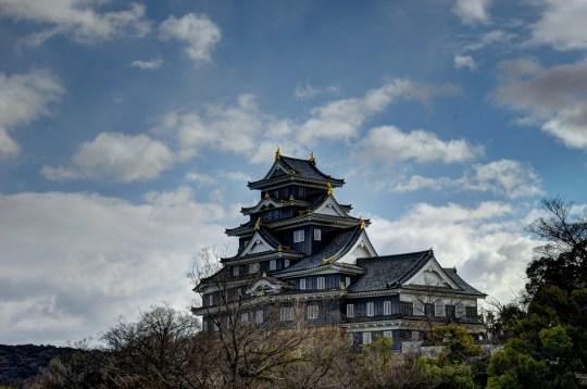 Château d'Okayama vue transversale