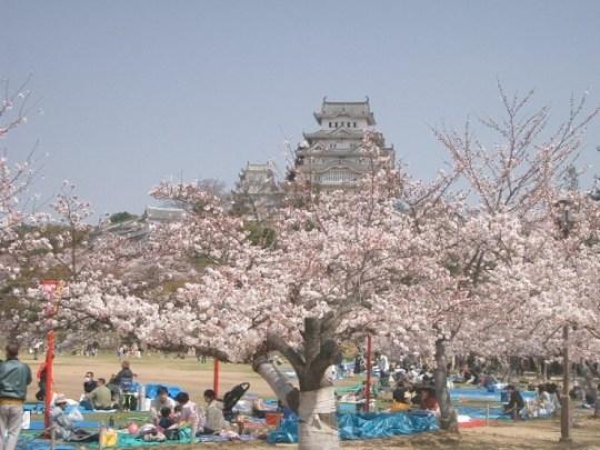 Rassemblement au pied du château de Himeiji.