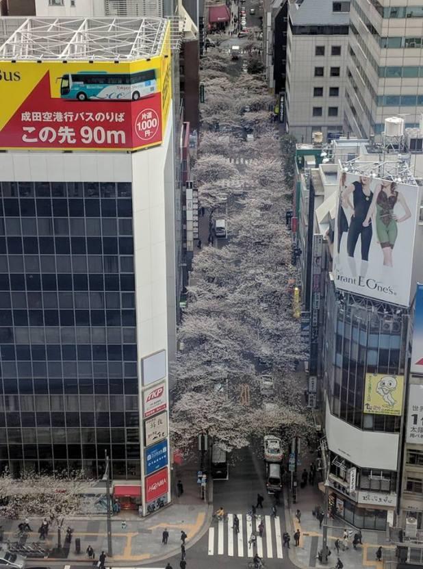 Vue de aérienne à proximité de Tokyo station par Raja Jayaram