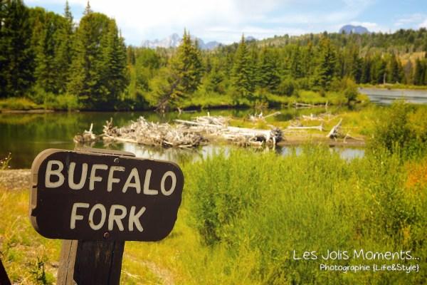 Grand Teton National Park 1 (1)