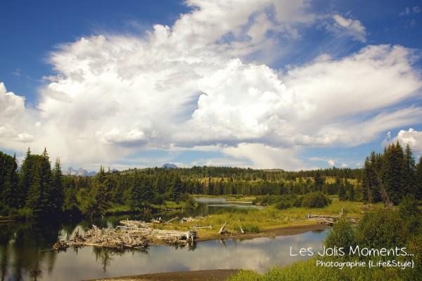 Grand Teton National Park 2 (1)